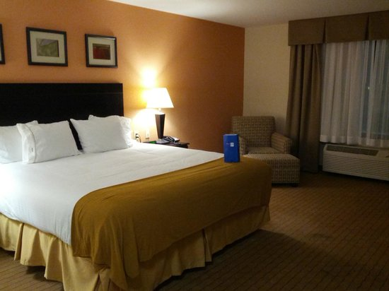Holiday Inn Express Hotel & Suites Lafayette East: King Size Bed / Room