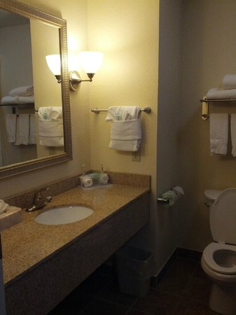 Holiday Inn Express Hotel & Suites Lafayette East: Bathroom / Vanity