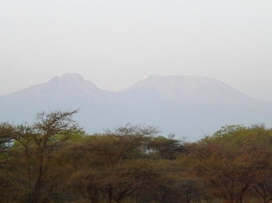 Severin Safari Camp: kilimanjaro from the restaurant