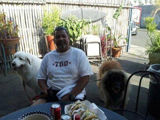 Best Fish Tacos in Ensenada: Dog friendly location