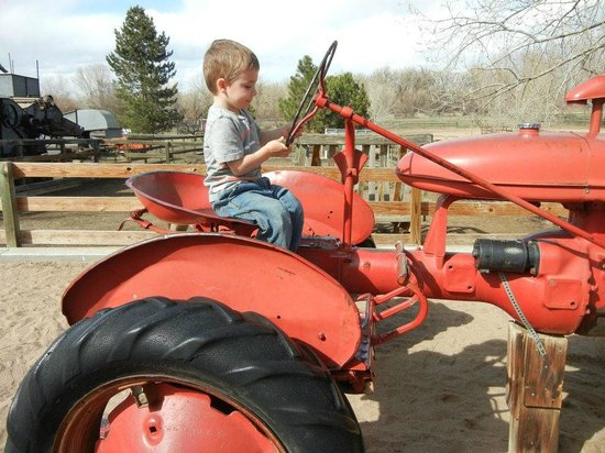 "The Farm at Lee Martinez Park: Loved ""driving"" the tractor"