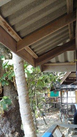 Ao sane bungalows