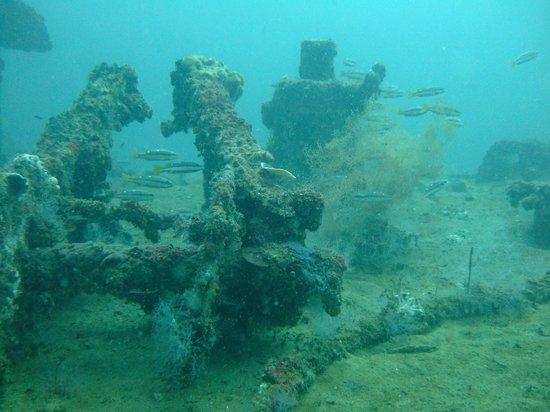 Arizona International Resort: Wreck diving in Subic Bay