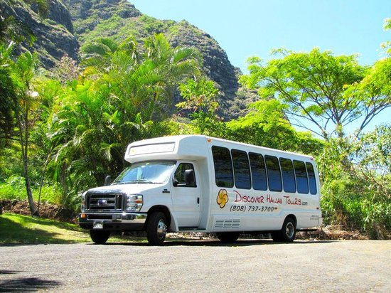 Discover Hawaii Tours Deluxe Mini-Bus