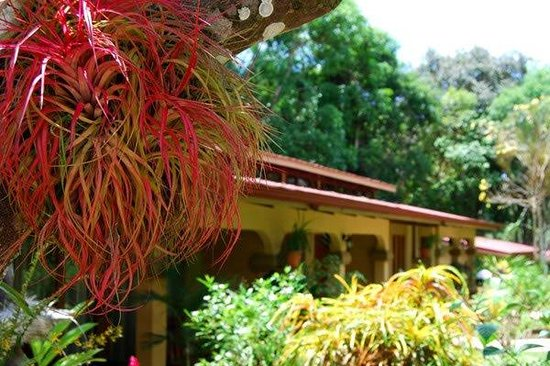 DoceLunas Hotel, Restaurant & Spa: Exterior View