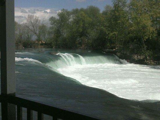 Bera Hotel Alanya: manavgat waterfall amazing