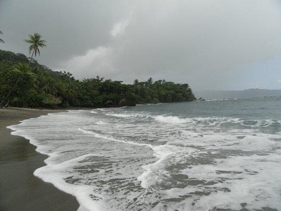 Cano Island: Beach where we ate