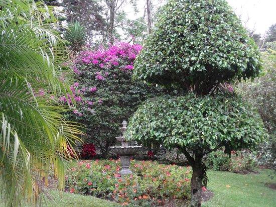 Boquete Garden Inn: Some of the lush gardens
