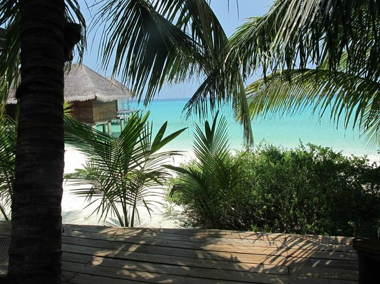 Kuramathi Island Resort: .