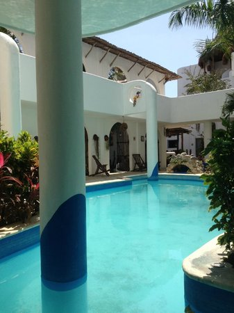Koox Matan Ka'an Hotel: Vista de piscina