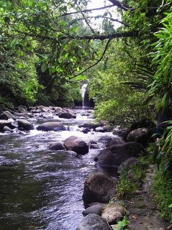 Taveuni Island Resort & Spa: Hike to waterfall