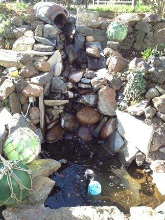 Maggie's Garden Bed & Breakfast: Garden Water Feature