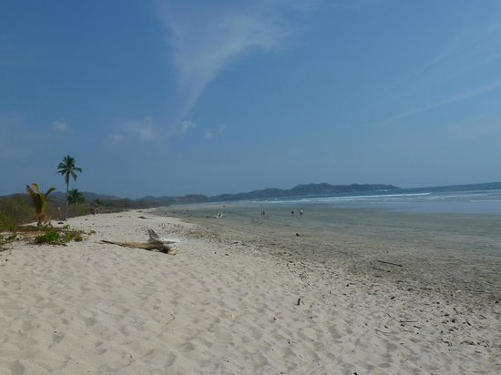 Giardino Tropicale: Strand