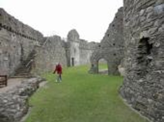 Kidwelly Bed & Breakfast: Another view inside the Kidwelly Castle
