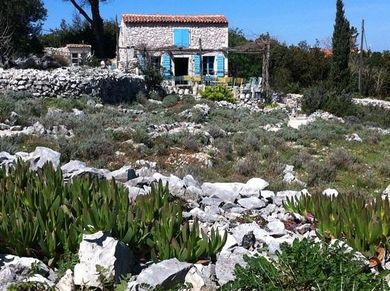 Mali Losinj, Croatia: The garden and the shop