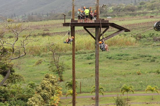 Maui Zipline Company: On the ziplines