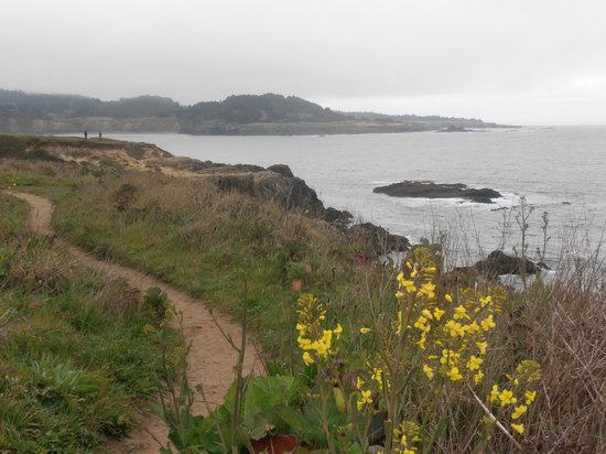 JD House : The always-invigorating Mendocino Headlands