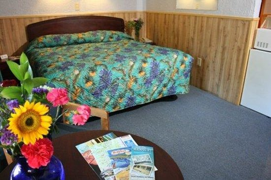 Mainstay Motor Inn: Guest Room