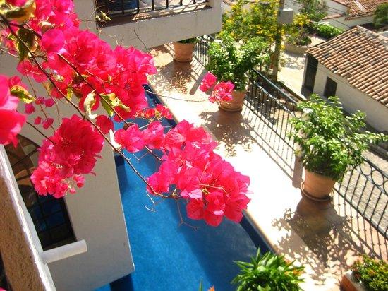 Casa Amorita: From my room