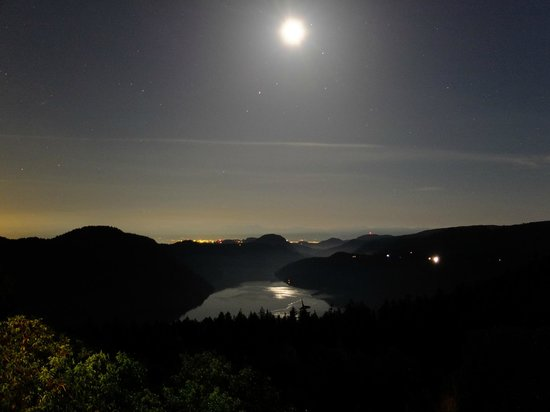 Prancing Horse Retreat: Night view of the olympic Mountains & Finlayson arm