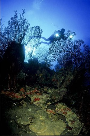 National Park Underwater Trail