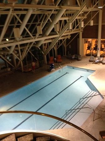 Sheraton Tysons Hotel: indoor pool