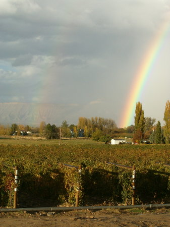 Grand Junction, CO: summer rainbow