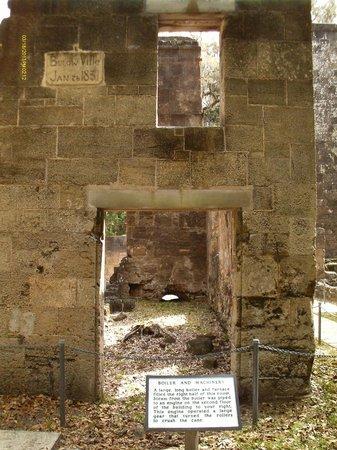 Bulow Plantation Ruins Historic State Park照片