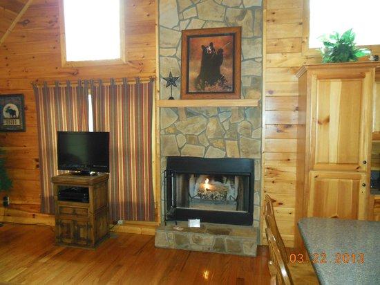 Mountain Top Cabin Rentals: living room