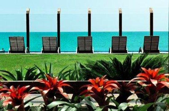 Villa Rasa Marina: Hotel Garden