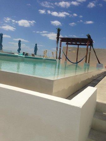 The Palm at Playa: TERRAZA