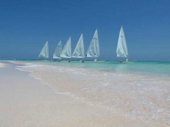 Club Med Punta Cana: Sailboats - Lasers