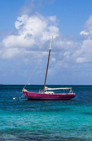 Palm Island Resort & Spa: The Pink Lady sailboat is available for excursions too.