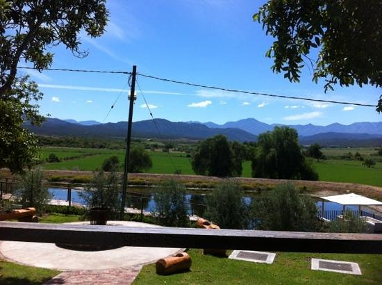 Surval Boutique Olive Estate: view from our table