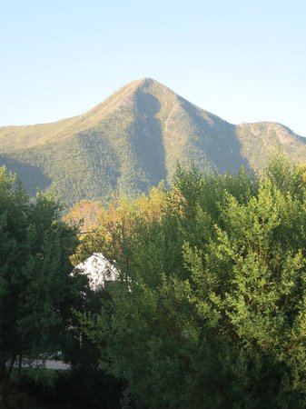 Tsitsikamma Backpackers : View from the room