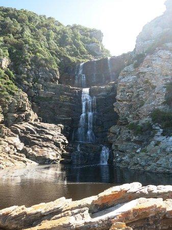 Tsitsikamma Backpackers : Waterfall
