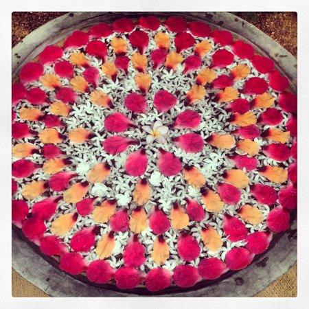 Sign of Life Resort: Blumen Mandala