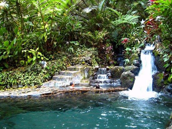 Cebu Botanical Garden