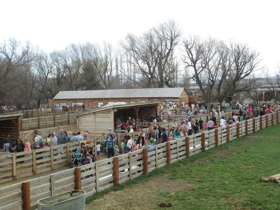 American West Heritage Center: The Crowd!