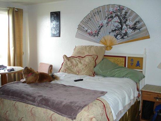 Table Rock Motel : My room