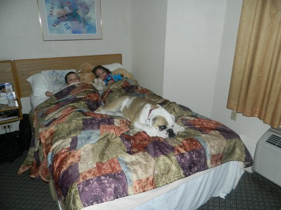 Sleep Inn: Our kids and bulldog name Spuds