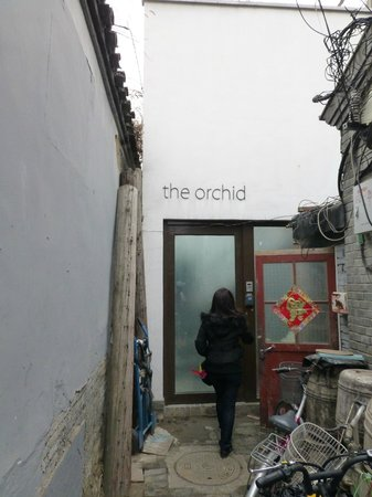The Orchid Hotel: The entrance to 'The Orchid'
