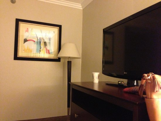 Vanllee Hotel and Suites: We got 2 tv in our suite!!