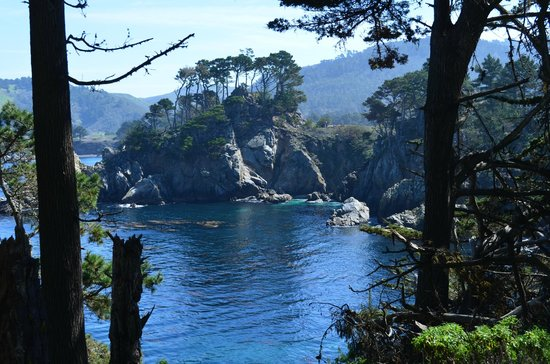 Point Lobos State Reserve: Stop and Enjoy the Moment
