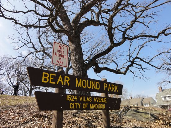 Vilas Park: Learned about the effigy mounds that still remain around the lake on our walking food tour