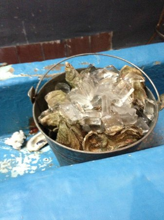 Lee and Rick's Half Shell Oyster Bar : Bucket of Oysters!