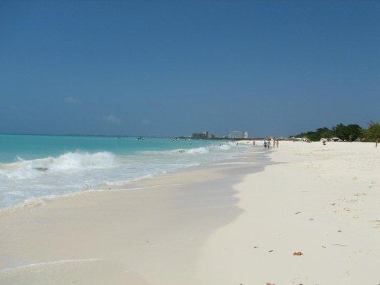 Large beautiful beach and huts picture of divi aruba all - Divi all inclusive ...