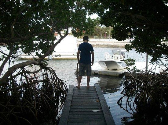 Ibis Bay Beach Resort: walk out dock