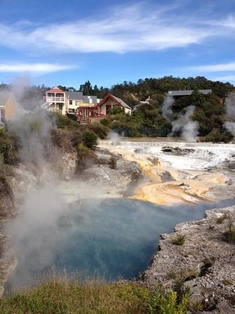 Whakarewarewa - The Living Maori Village: thermal pool next to village houses - unreal