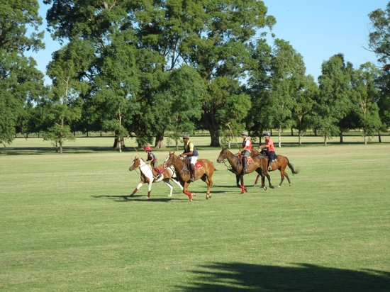 El Venado Polo School : Afternoon chukkas